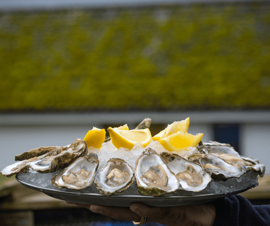 Oysters In Oban Restaurant